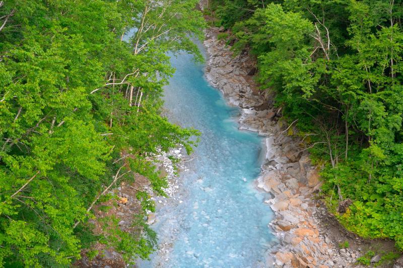[ 美瑛川 ]  白ひげの滝は美瑛川に流れ込んでいきます。