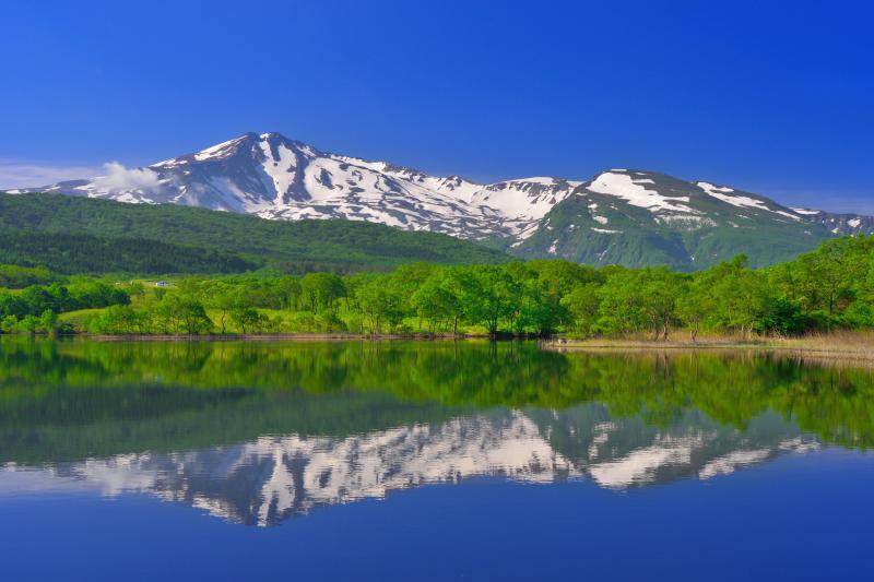 [ 扇谷地溜池 ]  新緑と残雪の鳥海山が綺麗でした。