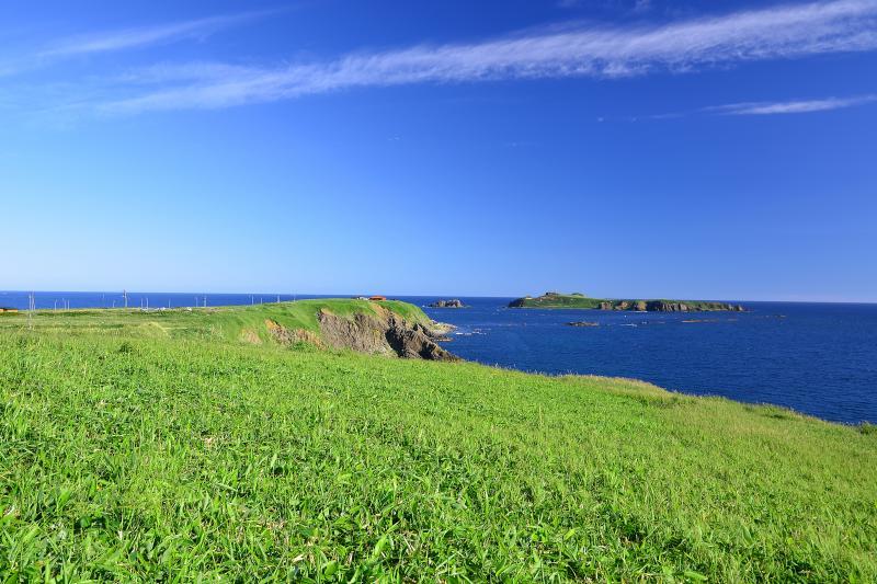 [ 礼文島スコトン岬 ]  礼文島最北端に位置するスコトン岬とトド島。初夏のすがすがしい空気に包まれた新緑と海の青が印象的でした。
