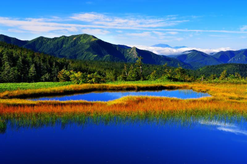 [ 9合目の池塘 ]  9合目付近から赤倉山方向を望む。山の夏は短く、もう草紅葉が始まりつつあります。