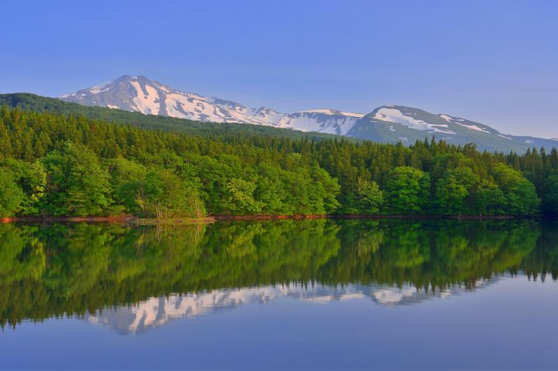 [ 野際溜池 ]  新緑の綺麗な静かな池です。