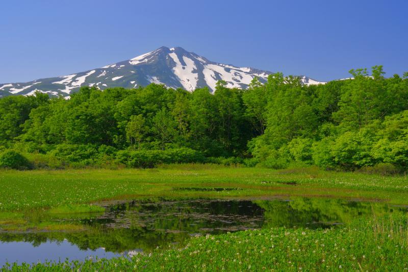 [ 桑ノ木台湿原の池塘 ]  湿原には綺麗な池塘があります。