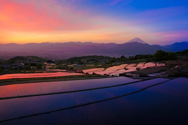 [ 中野の棚田 ]  富士山の見える棚田。朝焼け雲が棚田に映り込む瞬間が美しい。