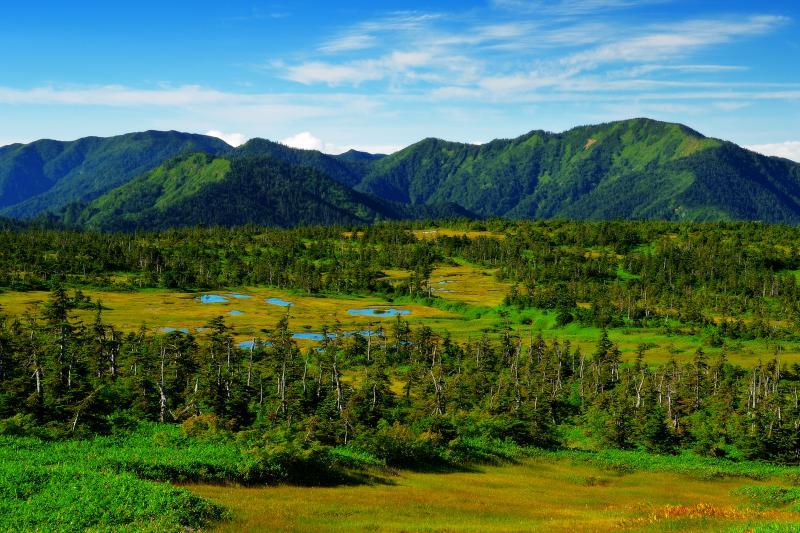 [ 山頂の眺め ]  山頂付近からは苗場山の雄大な高層湿地帯を俯瞰できます。また木道が整備されているので快適に池塘群を散策できます。