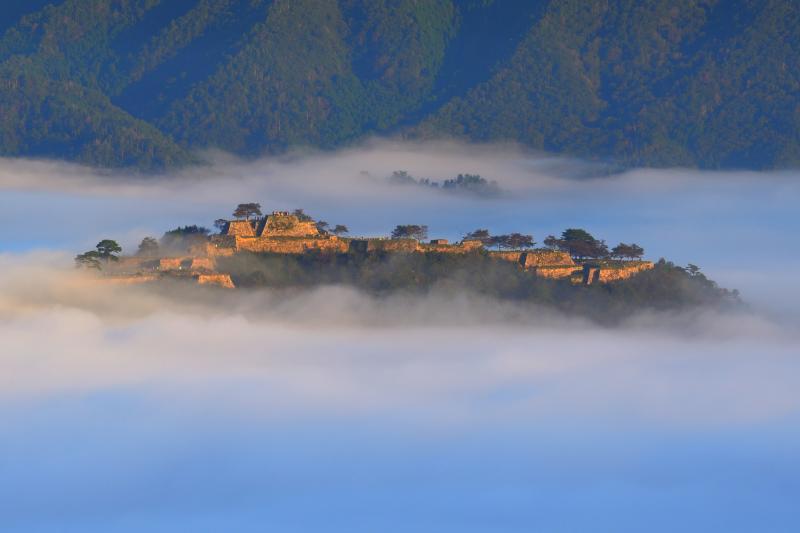 [ 立雲峡から望む竹田城趾雲海 ]  雲海に浮かぶ城郭が早朝の斜光に照らされて幻想的でした。
