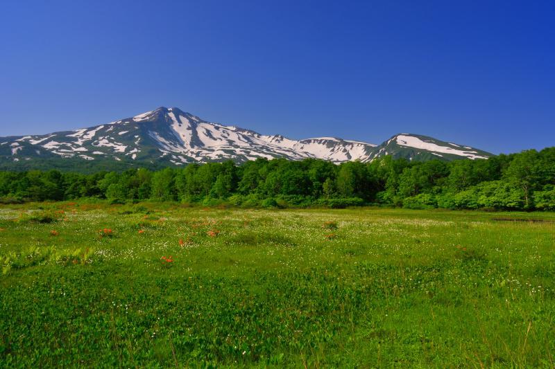 [ 桑ノ木台湿原 ]  小さな湿原ですが展望が素晴らしいです。