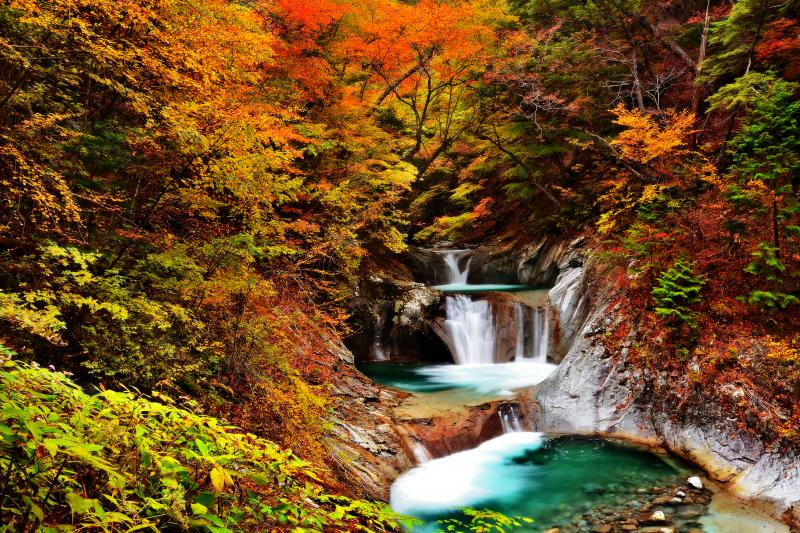 錦秋の七ツ釜五段ノ滝 10月下旬の西沢渓谷。錦秋の紅葉に囲まれた渓谷美。エメラルドグリーンの清流が秋色に映えていました。