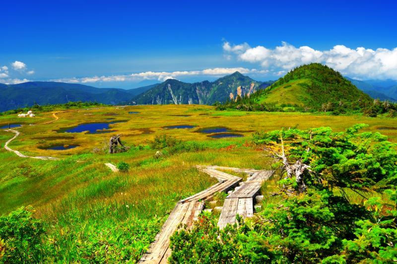 [ 晩夏の苗場山 ]  最短ルートである秋山郷小赤沢の三合目登山口から約2時間半、9合目手前に広がる池塘群。遠くに鳥甲山が見えます。山頂の池塘群までもう少しです。