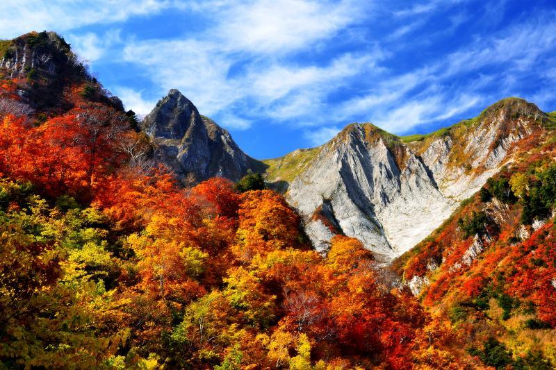 [ 雨飾山 錦秋 ]  雨飾高原キャンプ場から登山道を約1時間半歩くと、荒菅沢手前のビューポイントに着きます。ここからは赤と黄色に彩られた雨飾山の眺望が楽しめます。