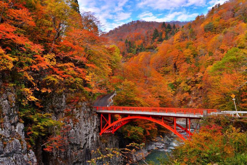 前倉橋 秋模様 | 錦秋の中津川に掛かる赤い欄干が素敵