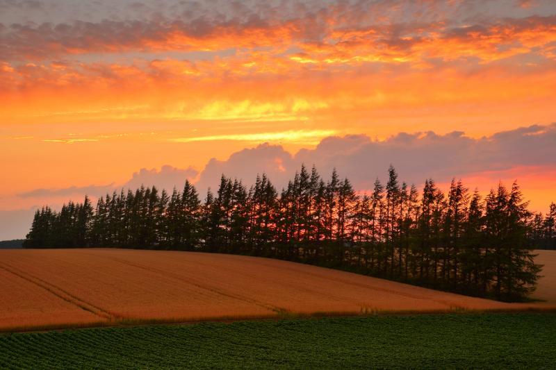 [ 小清水町の丘 ]  丘の向こうには美しい夕焼け空が広がっていました。