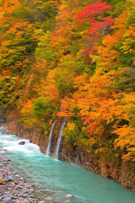 [ 屋敷地区の幻の滝 ]  長雨の後に現れる幻の滝