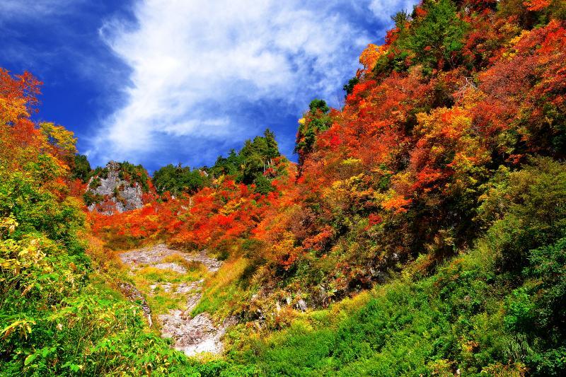 [ 秋山郷 ]  奥志賀林道は道幅も広く綺麗にに舗装されているので快適にドライブできます。所々駐車可能なスペースもあるので気に入った場所でゆっくり撮影できます。また、渓流にも降りられる場所が点在しているので川沿いの散策も可能です。