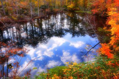五月池| 白池の隣にある五月(さつき)池。樹木に囲まれた静寂な水面。雲の映り込みが印象的でした。
