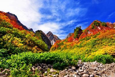 荒菅沢より望む布団菱の紅葉| 先ほどのビューポイントから少し下ると荒菅沢に着きます。解放感抜群の休憩場所で、布団菱の紅葉が目に飛び込んできます。透き通る青空と色鮮やかな紅葉のコントラストが印象的。