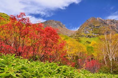 りんどう平の秋| 焼岳の双耳峰を望むりんどう平は秋色に染まっていました
