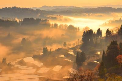 朝霧燃える星峠| 早朝の斜光に照らされた朝霧の中に美しい棚田が浮かび上がっていました。