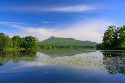 大沼公園| 大沼湖畔から見た駒ヶ岳。水面が夏空を映し湖面のコウホネが銀色に輝いていました。