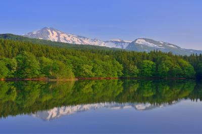 野際溜池| 新緑の綺麗な静かな池です。
