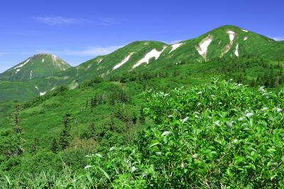 残雪の火打山と焼山| 笹ヶ峰の登山口から火打山直下の天狗の庭を目指します。まずは富士見平まで約2時間。そこを過ぎると目の前に残雪を抱いた火打山と焼山が目に飛び込んできます。