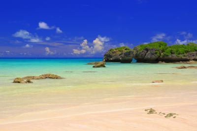 隆起サンゴの浜| 隆起サンゴが白い砂浜に南国らしさを与えています。