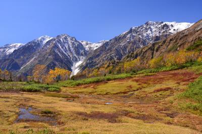 展望湿原| 秋の展望湿原から見た初冠雪の白馬三山。自然園入口から約1時間の行程 。ここは栂池湿原の南端に位置し白馬三山と大雪渓の最大のビューポイントです。
