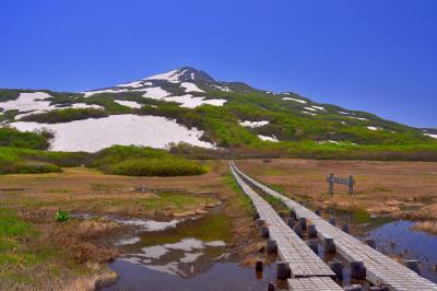 竜ヶ原湿原| 雪解け水に映った鳥海山が印象的。