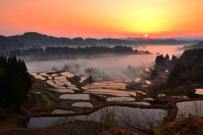 星峠の朝| 柔らかな朝の光が雲海を薄紅色に染めていました。