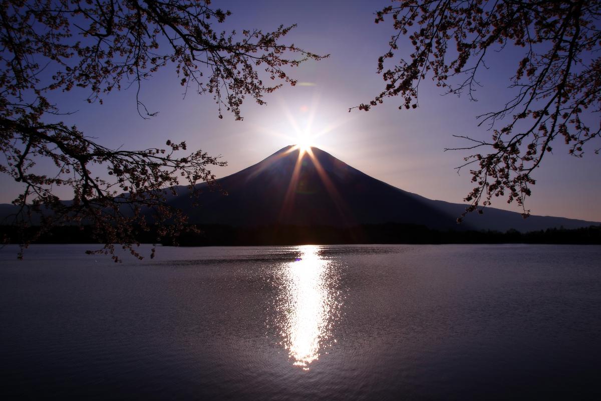 桜ダイヤモンド 春は桜フレームのダイヤモンド富士を見ることができます。