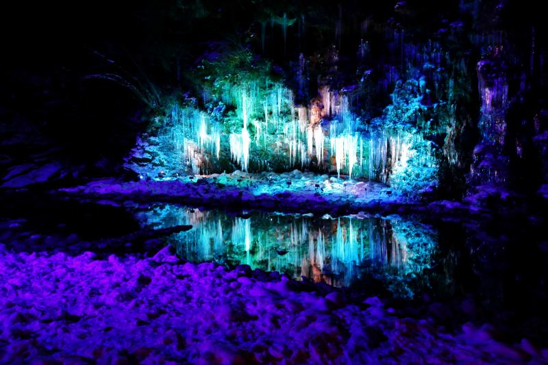 寒色氷柱 1月中旬から2月中旬まで大滝氷まつりが開催され、氷柱がライトアップされます。