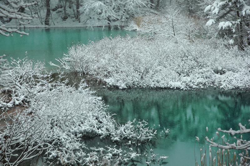 五色沼 雪景色 モノクロの世界に神秘的な色の沼。春から秋にかけて賑わう五色沼、冬は静寂に包まれています。