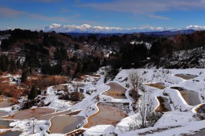 棚田と冠雪の山々| 冬晴れの日、遠くの山々は白くそびえ、日本の原風景が広がっていました。