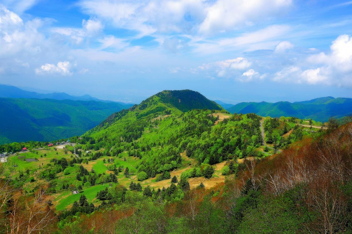 山田牧場 俯瞰 新緑の季節をむかえ樹々の葉が輝いています。