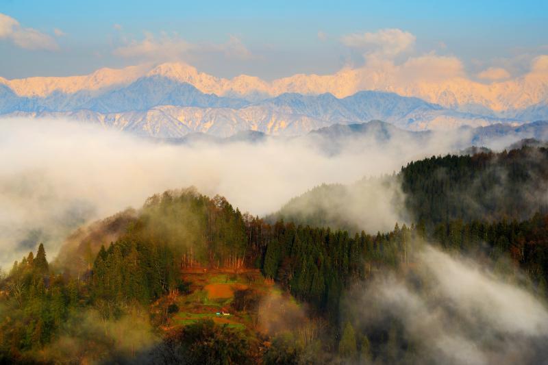 沸き上がる霧 雨上がりの早朝。北アルプスを遮っていた霧が掻き消えていきました。