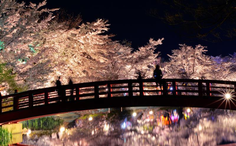 [ 桜雲橋 ]  桜の雲に包まれた弁天橋。
