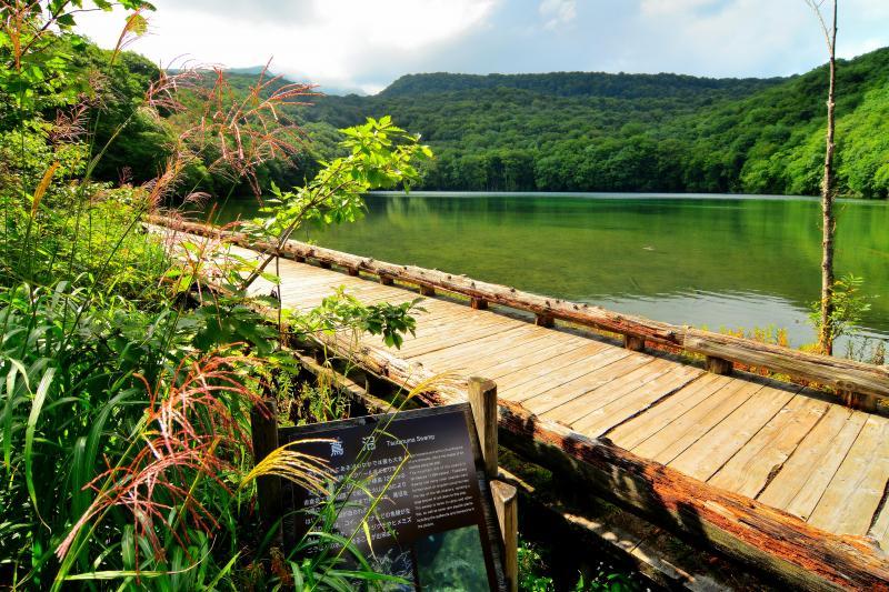 [ 撮影場所 ]  水面に沿って遊歩道があります。幅もあり三脚を使用して撮影できます。