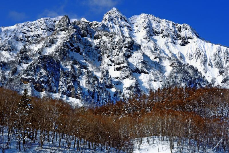 [ 厳冬の戸隠連峰 ]  大雪の翌日は険しい岩肌が真っ白になります。深い雪に覆われる冬季はスキーやスノーシューが必須。戸隠神社「奥社」参道にある「随神門」からの訪問がオススメ。