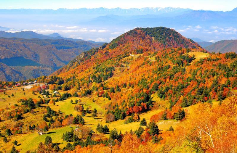 ミニチュア | 山田牧場を俯瞰すると紅葉した樹木が模型のように見えます。眼下に広がる善光寺平、遠くには北アルプス。