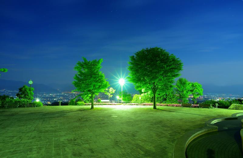 [ 2本のツリーと甲府盆地の夜景 ]  公園の広場には2本の印象的な木がありました。奥には甲府盆地の夜景が広がっています。