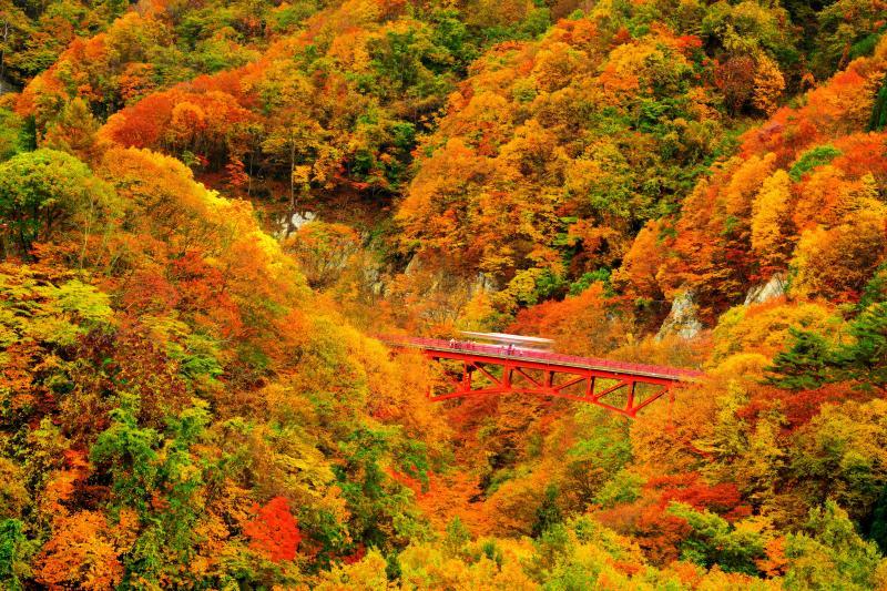 [ 松川渓谷 錦秋 ]  松川渓谷の入り口、谷深いV字谷に架かる紅い橋。秋の定番撮影ポイント