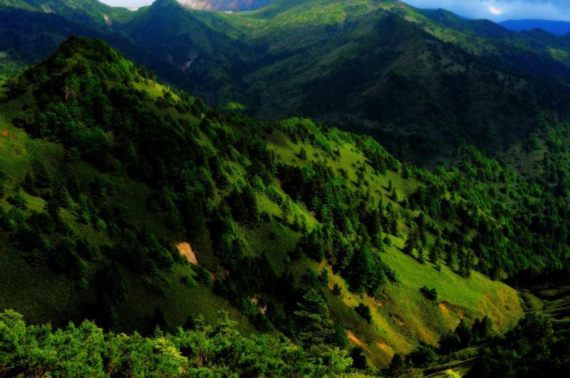 [ 志賀高原 のぞき ]  緑に包まれた志賀高原 午後の光が複雑な地形を照らし出していました。