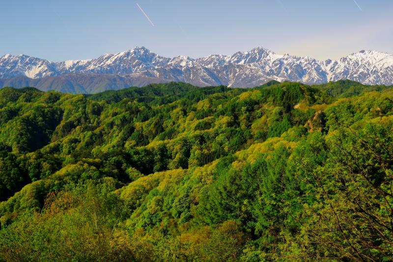 信州 小川村 新緑 樹々が芽吹き 色鮮やかな新緑に包まれた小川村。高気圧に覆われよく晴れた日 残雪の北アルプスが一望できました。