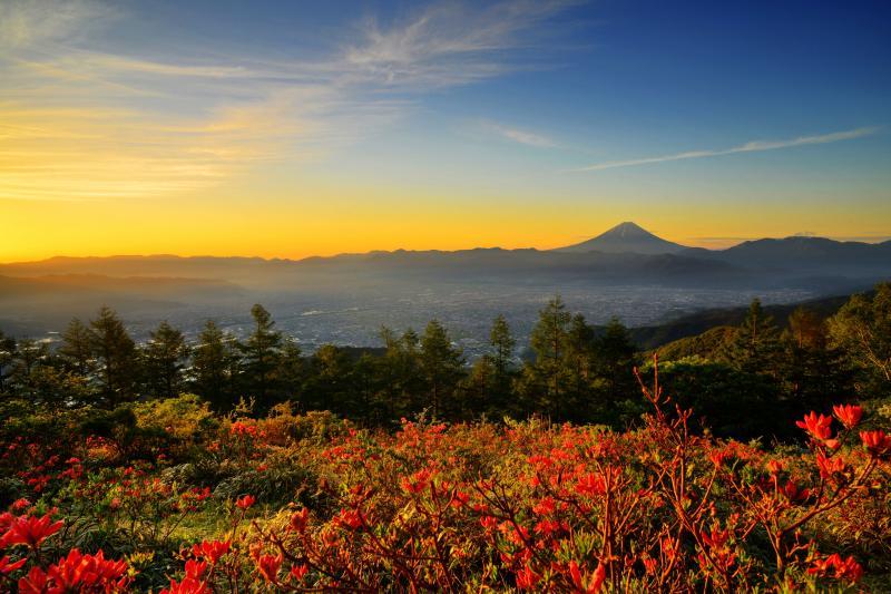 朝焼け空に浮かぶ富士山| 甲府盆地を見守るように聳える富士山。広大な風景にも負けない存在感。