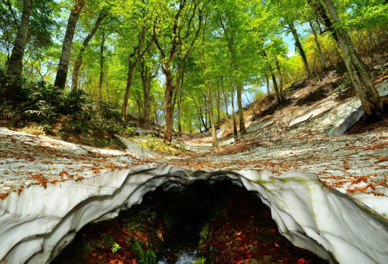 [ 新緑ドーム ]  鎌池の北側の山から流れ込む水でできた雪洞。この上を歩く時は注意が必要です。