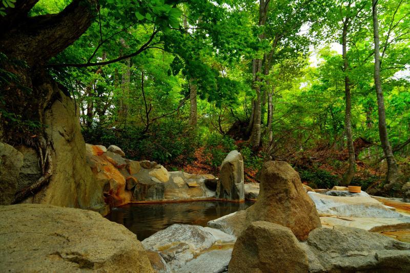 [ 雨飾高原「露天風呂」 ]  自然に包まれた雰囲気のある湯船