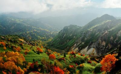 紅葉の谷| 深い谷に点在する樹々が秋色に変化していきます。雲海や霧もよく発生します。
