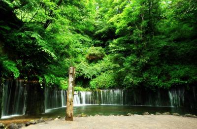白糸の滝| さわやかで涼しく 暑さを忘れることができます。