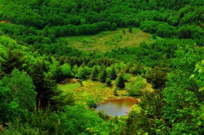 [ 五味池破風高原 大池 ]  五味池破風高原の大平から大池を望む。