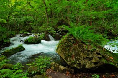 奥入瀬渓流|