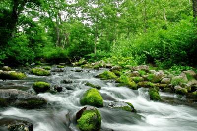 雑魚川 清流| 道路沿いに流れており釣り人が多い渓流です。